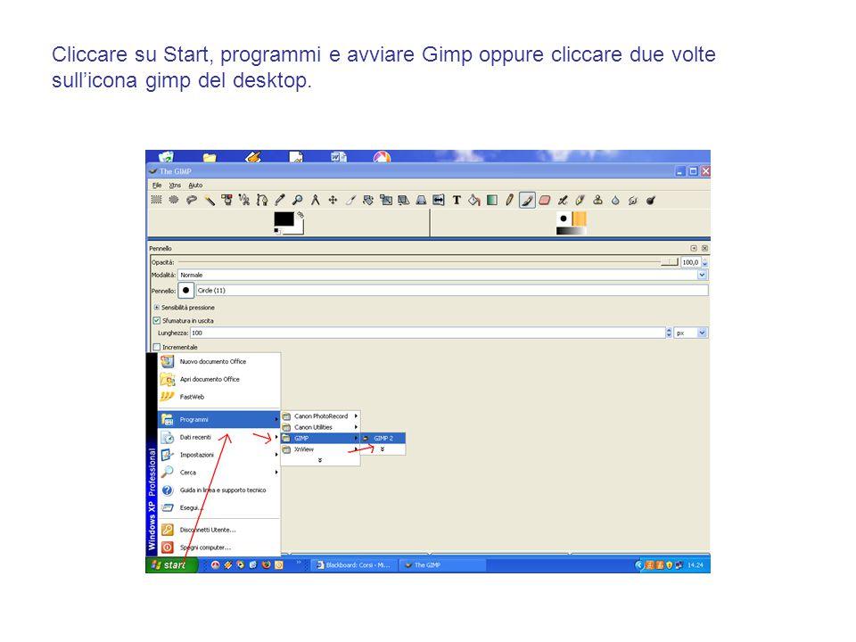 Cliccare su Start, programmi e avviare Gimp oppure cliccare due volte sull'icona gimp del desktop.