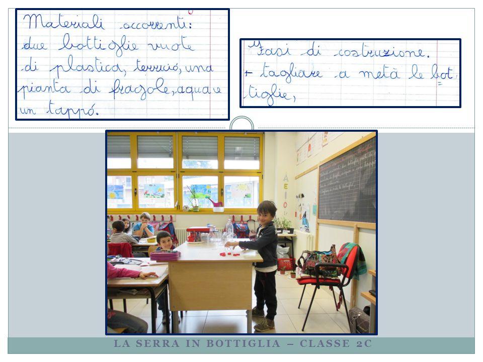 LA SERRA IN BOTTIGLIA – CLASSE 2C