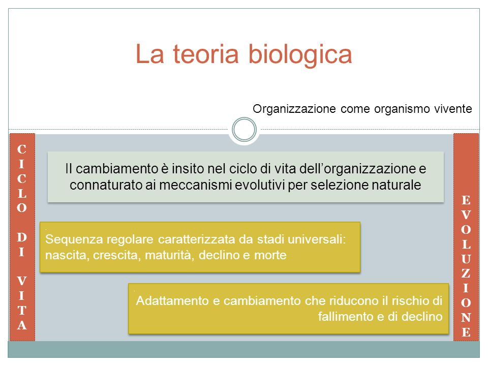 La teoria biologica Organizzazione come organismo vivente. C. I. L. O. D. V. T. A. E. V. O.