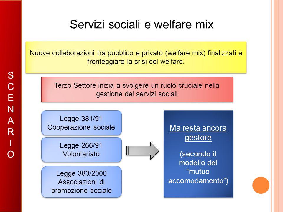 Servizi sociali e welfare mix