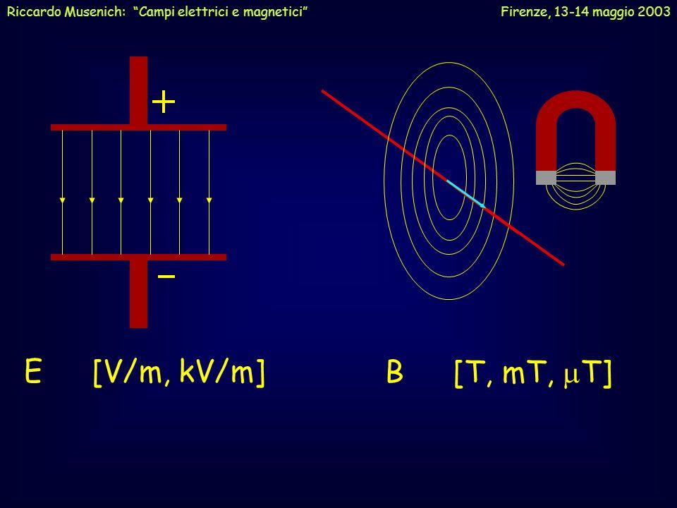 Riccardo Musenich: Campi elettrici e magnetici Firenze, 13-14 maggio 2003