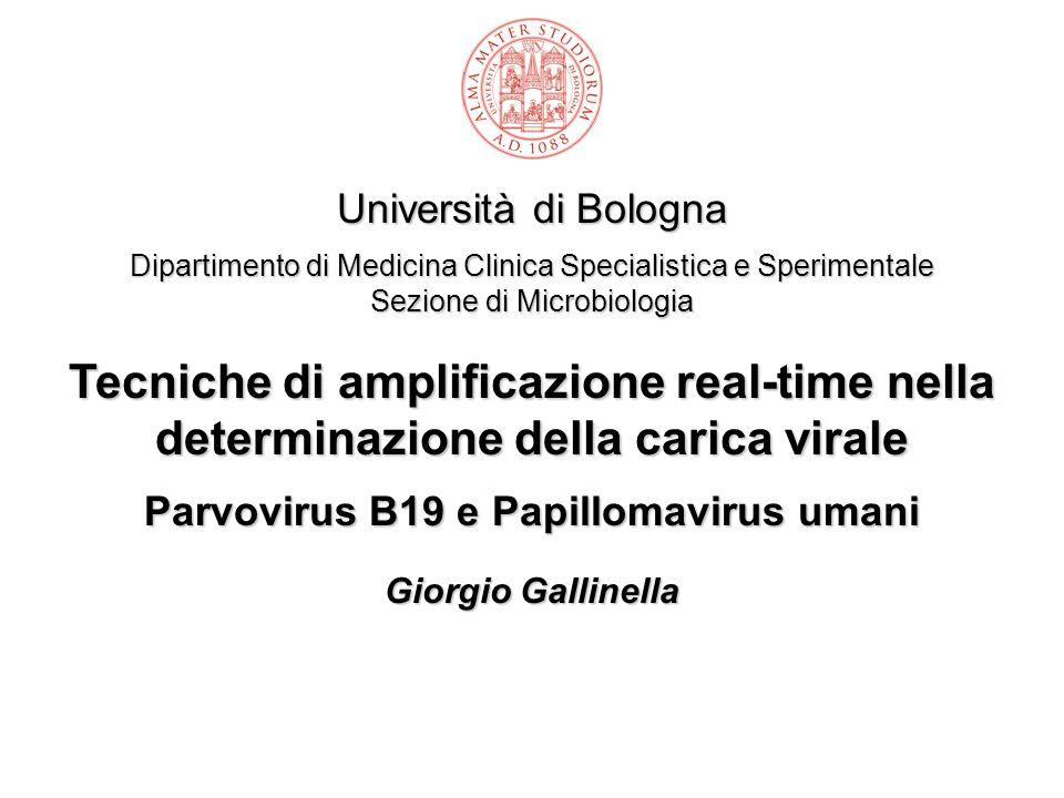 Parvovirus B19 e Papillomavirus umani