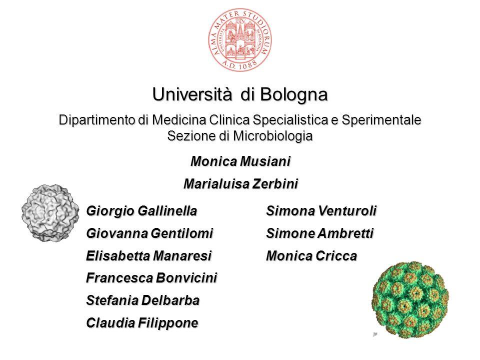 Università di Bologna Dipartimento di Medicina Clinica Specialistica e Sperimentale Sezione di Microbiologia.