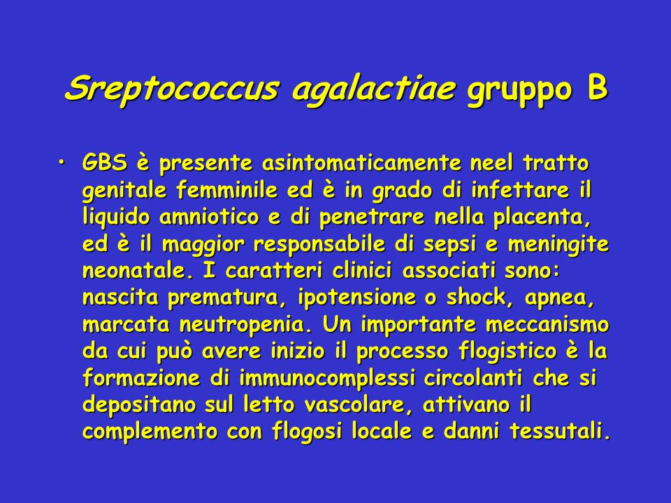 Sreptococcus agalactiae gruppo B