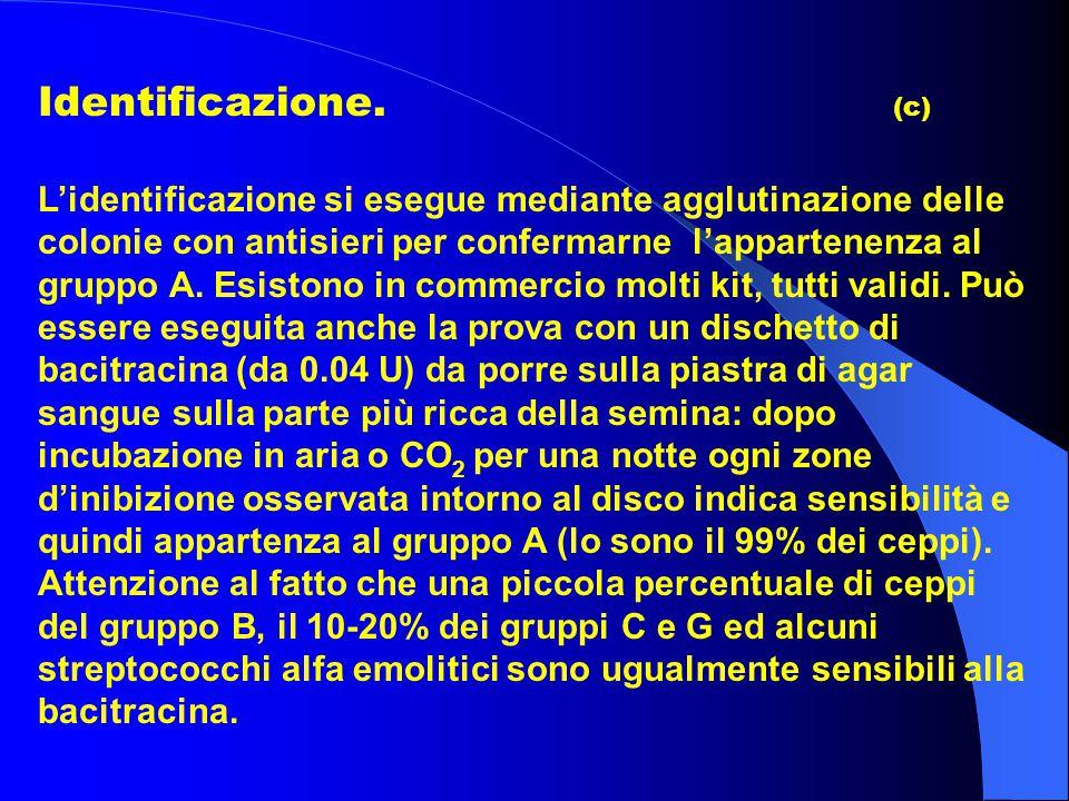 Identificazione. (c)