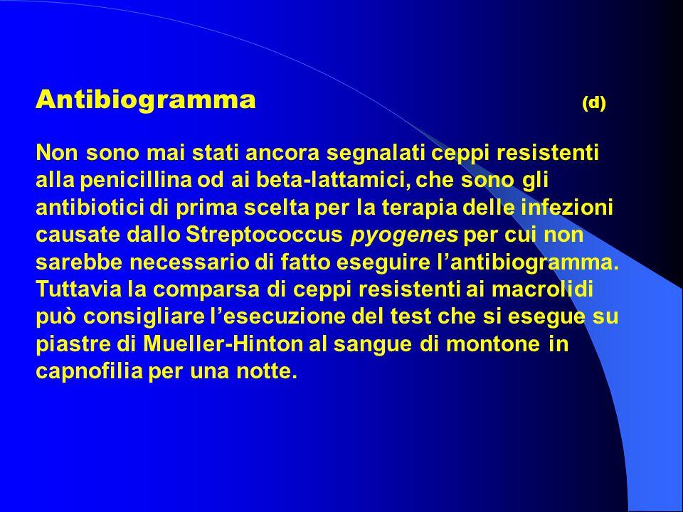 Antibiogramma (d)