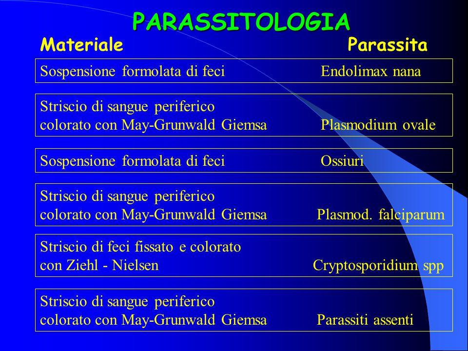 PARASSITOLOGIA Materiale Parassita