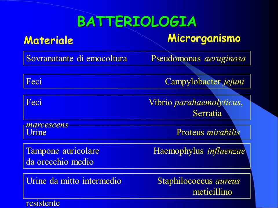 BATTERIOLOGIA Microrganismo Materiale