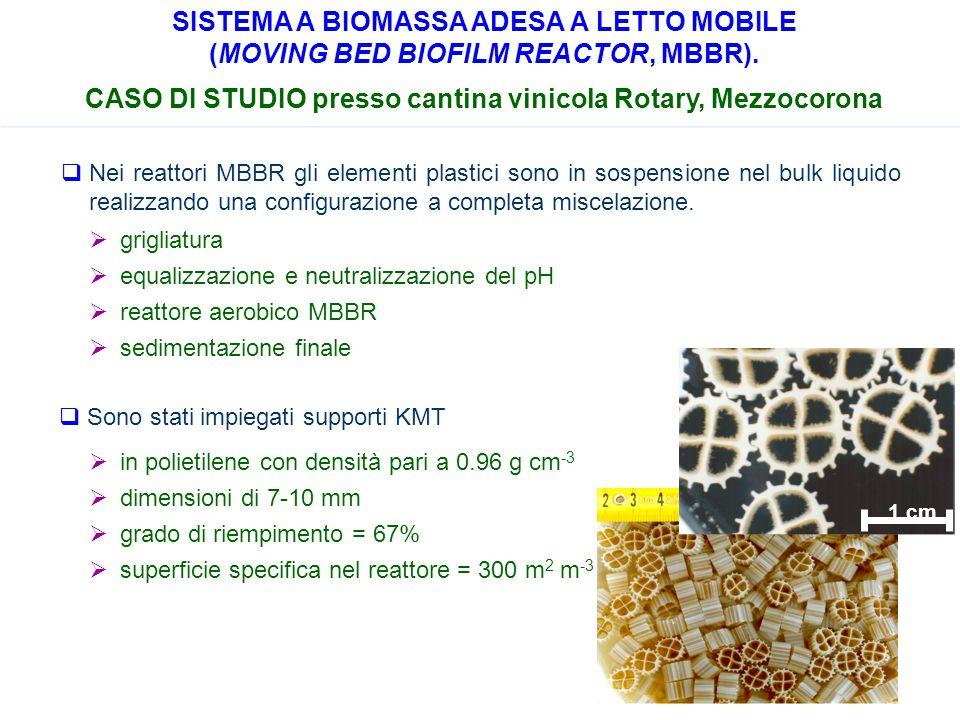 CASO DI STUDIO presso cantina vinicola Rotary, Mezzocorona