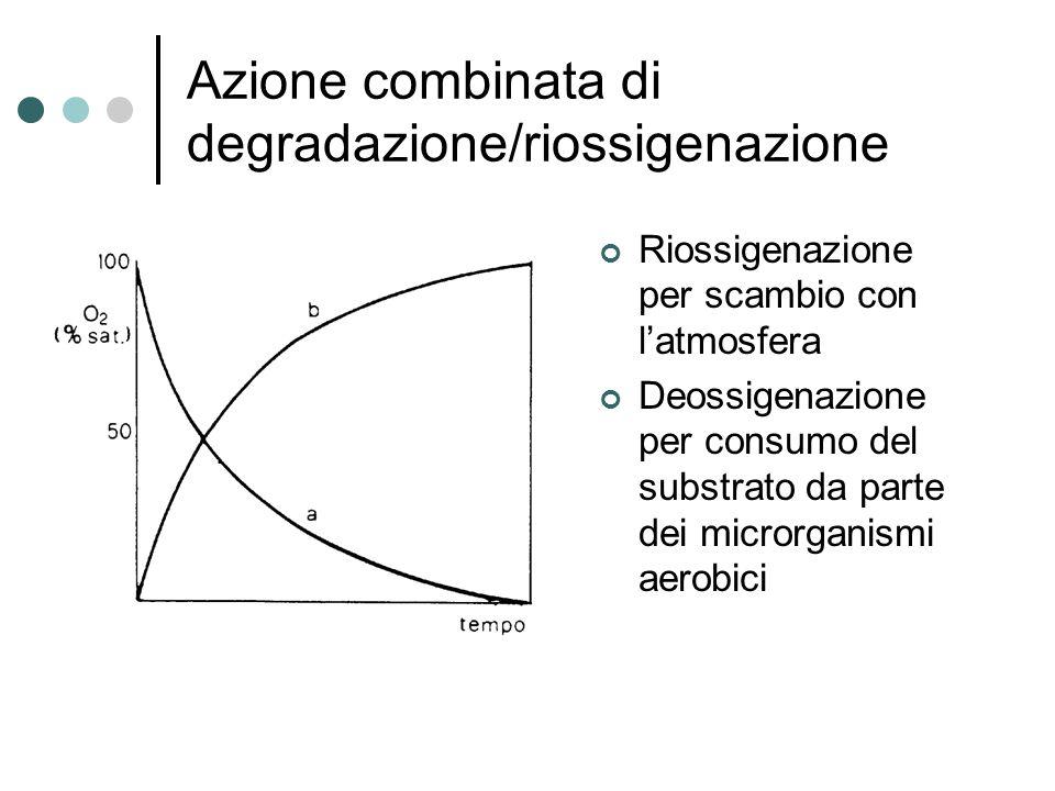 Azione combinata di degradazione/riossigenazione