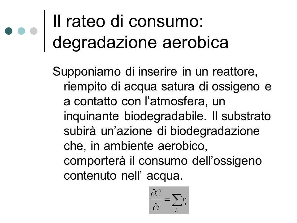 Il rateo di consumo: degradazione aerobica