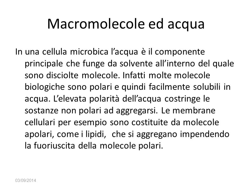 Macromolecole ed acqua