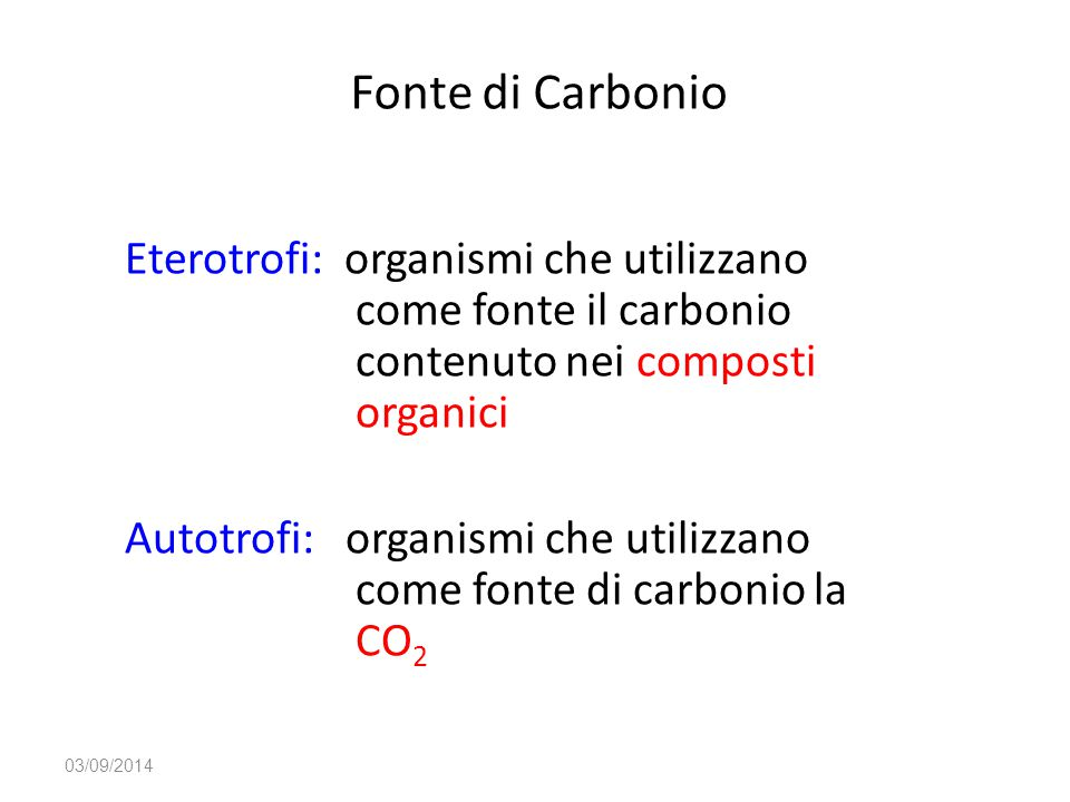Fonte di Carbonio