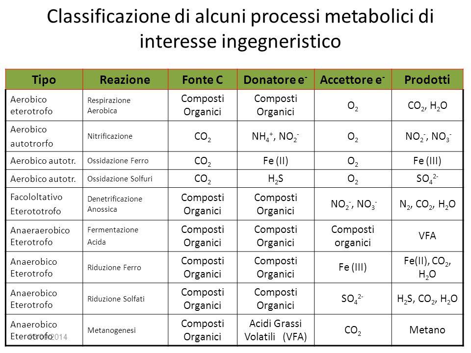 Acidi Grassi Volatili (VFA)