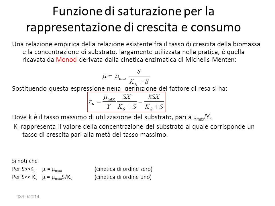 Funzione di saturazione per la rappresentazione di crescita e consumo