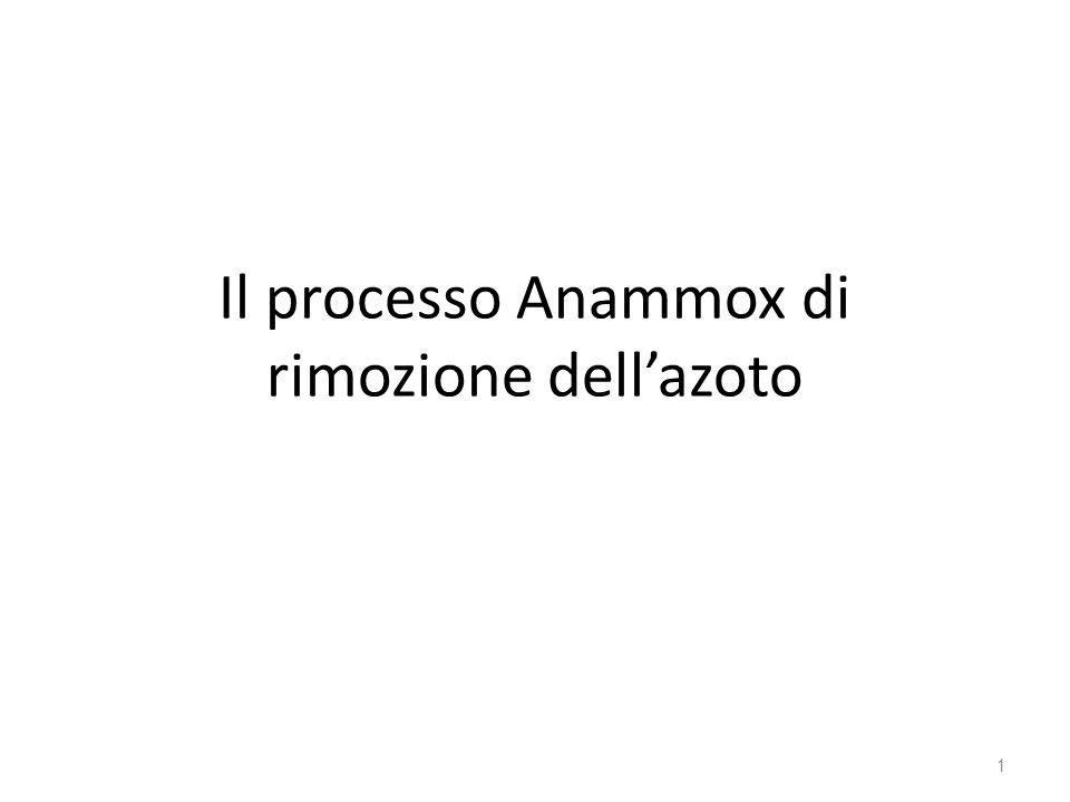 Il processo Anammox di rimozione dell'azoto