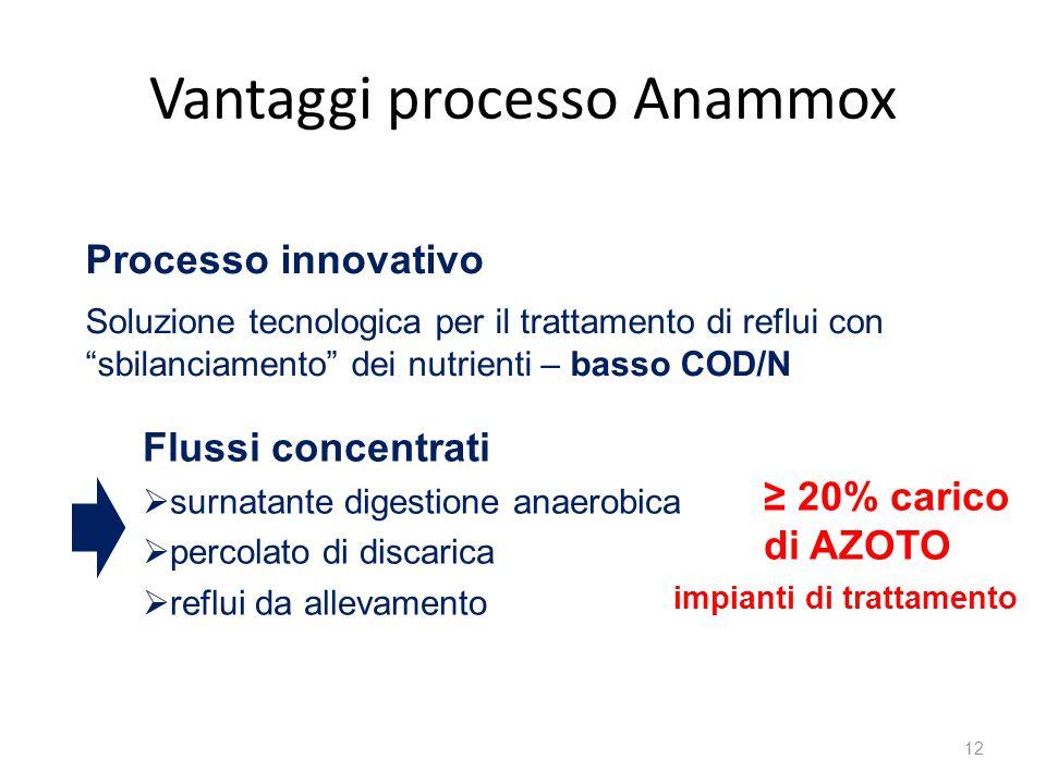Vantaggi processo Anammox