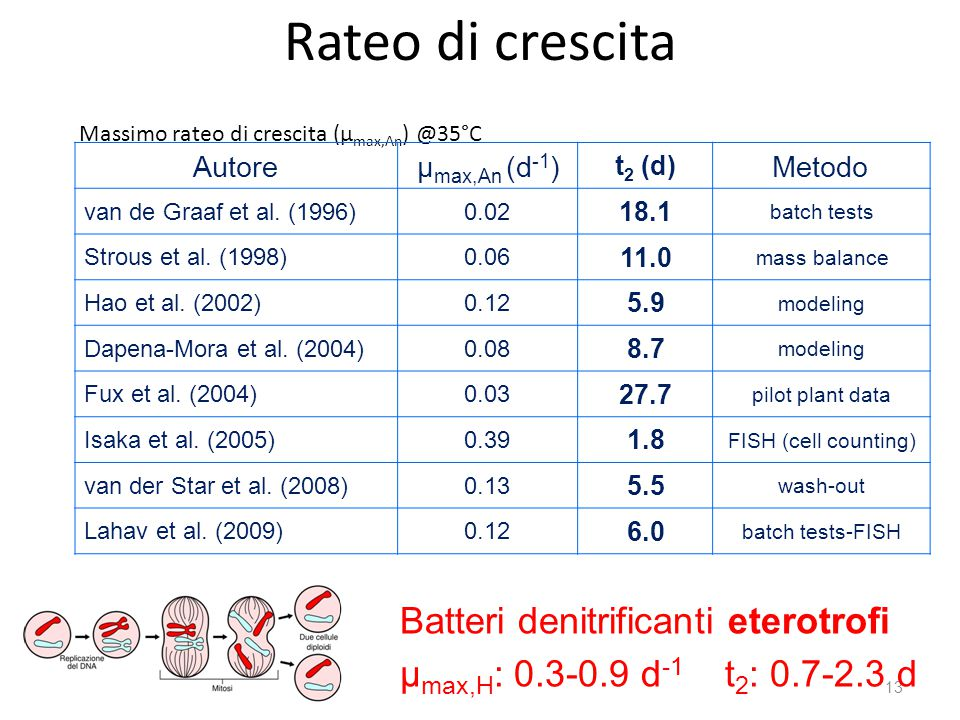 Rateo di crescita Batteri denitrificanti eterotrofi