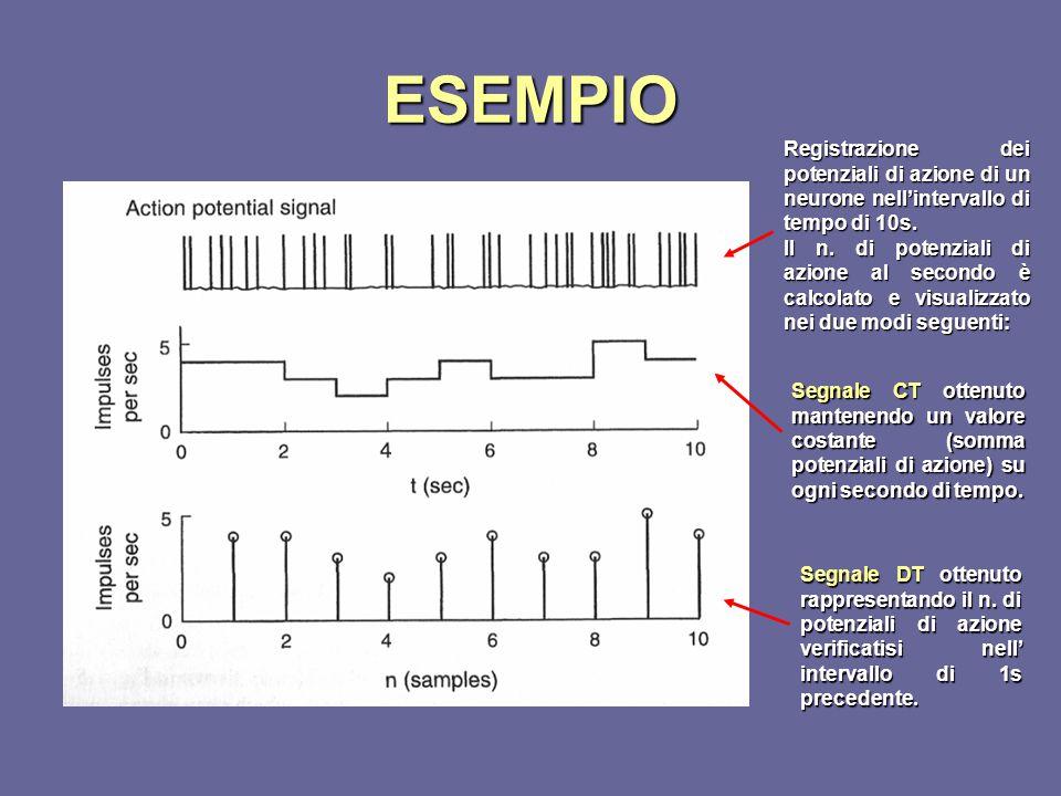 ESEMPIO Registrazione dei potenziali di azione di un neurone nell'intervallo di tempo di 10s.