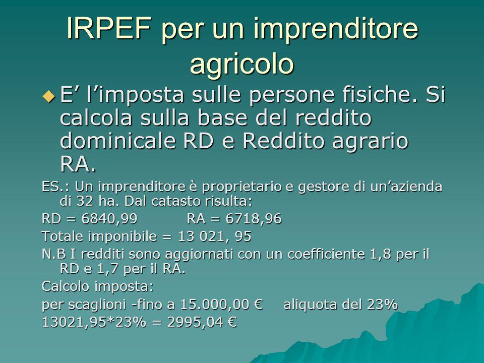 IRPEF per un imprenditore agricolo