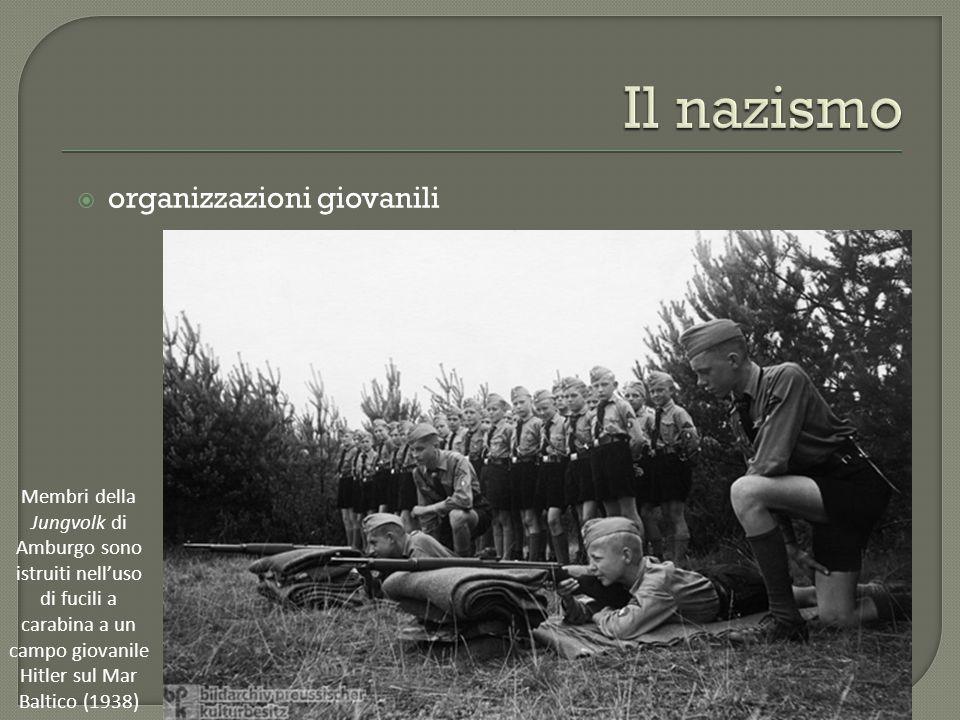 Il nazismo organizzazioni giovanili