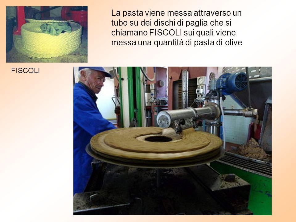 La pasta viene messa attraverso un tubo su dei dischi di paglia che si chiamano FISCOLI sui quali viene messa una quantità di pasta di olive