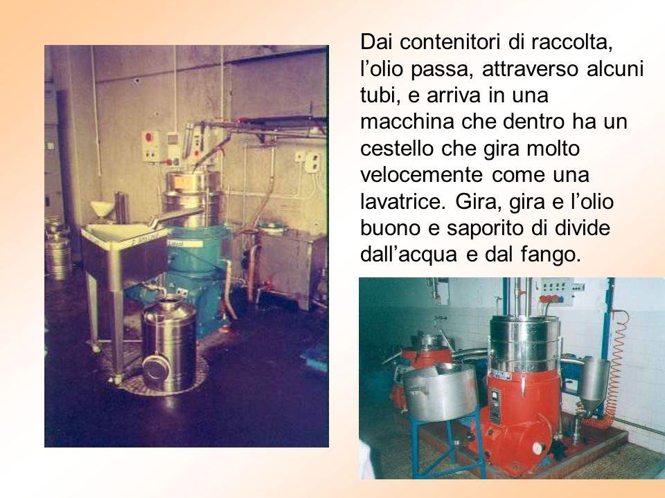 Dai contenitori di raccolta, l'olio passa, attraverso alcuni tubi, e arriva in una macchina che dentro ha un cestello che gira molto velocemente come una lavatrice.