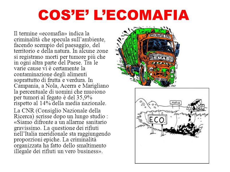 COS'E' L'ECOMAFIA