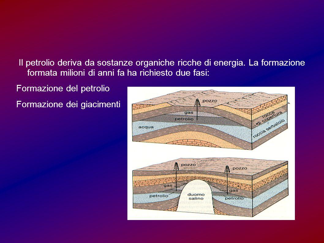 Il petrolio deriva da sostanze organiche ricche di energia