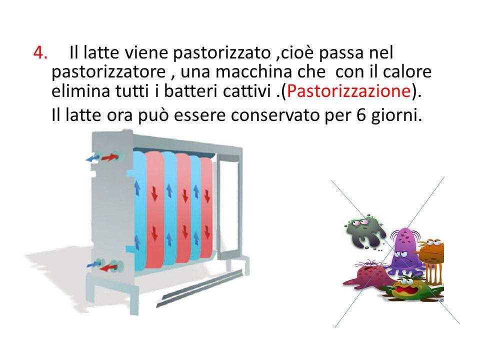 Il latte viene pastorizzato ,cioè passa nel pastorizzatore , una macchina che con il calore elimina tutti i batteri cattivi .(Pastorizzazione).