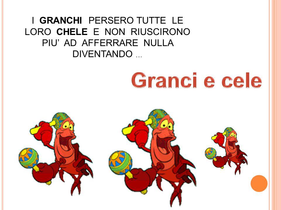 I GRANCHI PERSERO TUTTE LE LORO CHELE E NON RIUSCIRONO PIU' AD AFFERRARE NULLA DIVENTANDO …