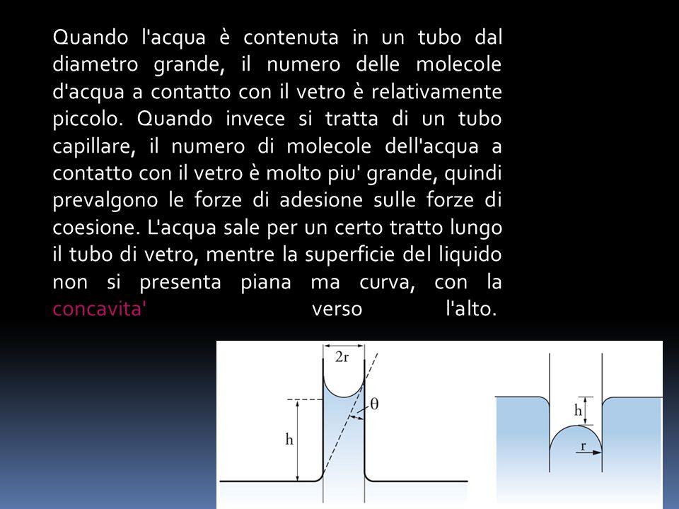 Quando l acqua è contenuta in un tubo dal diametro grande, il numero delle molecole d acqua a contatto con il vetro è relativamente piccolo.