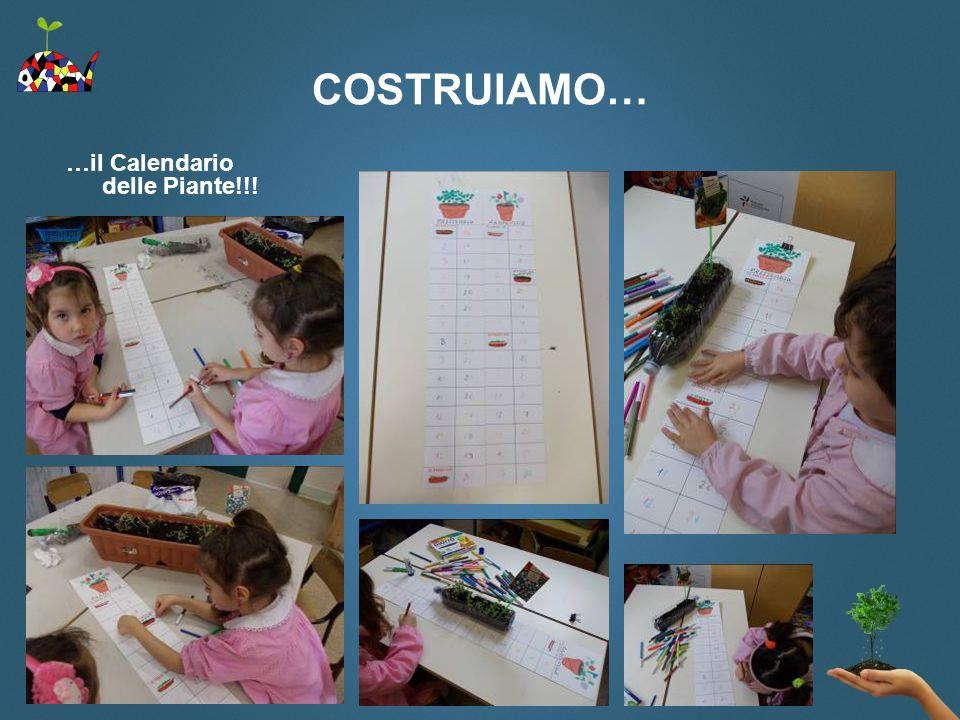 COSTRUIAMO… …il Calendario delle Piante!!!