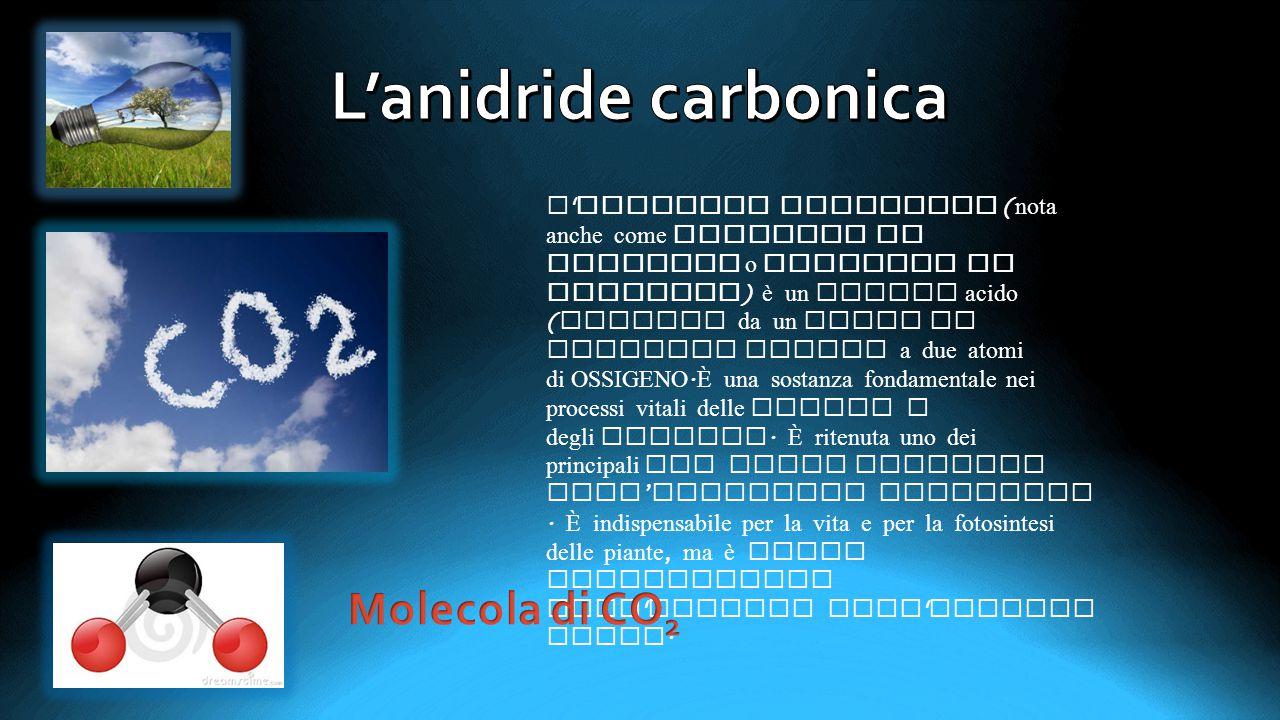L'anidride carbonica Molecola di CO2