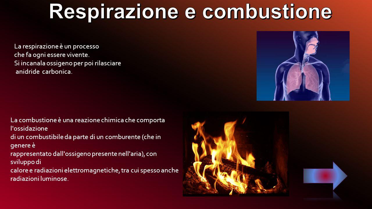 Respirazione e combustione