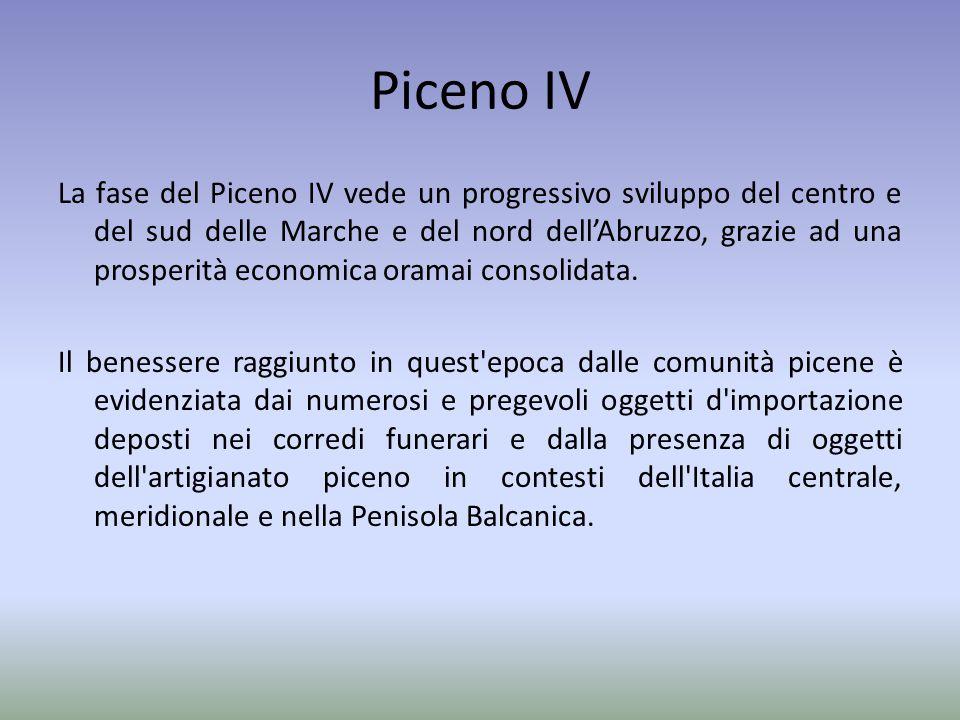 Piceno IV