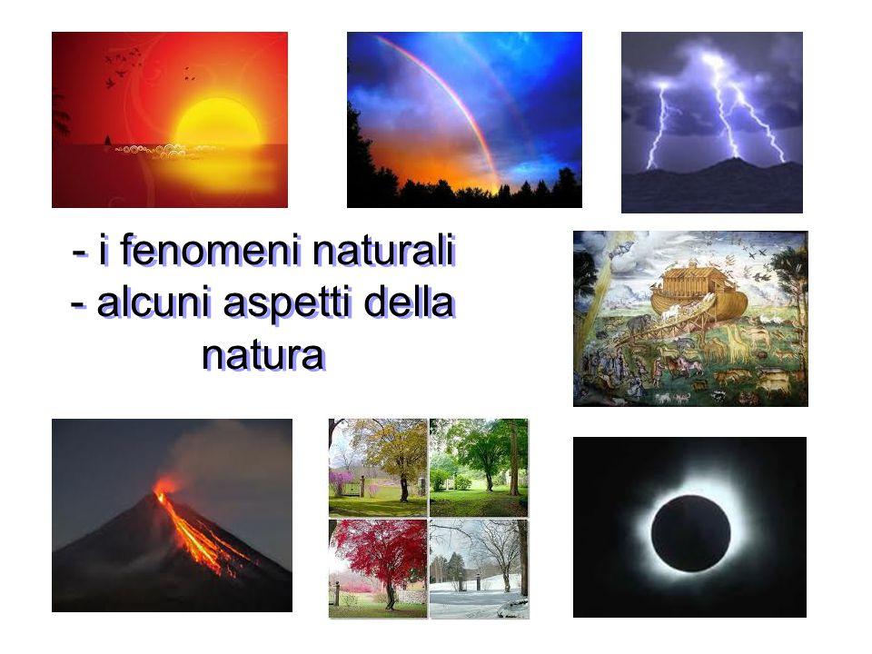 - alcuni aspetti della natura