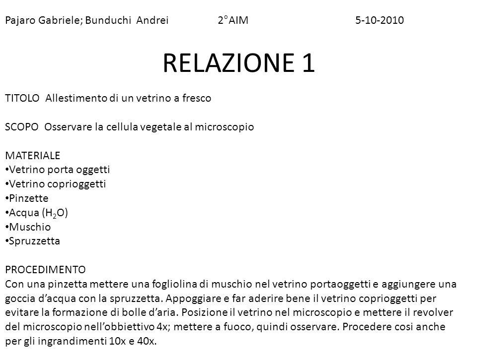 RELAZIONE 1 Pajaro Gabriele; Bunduchi Andrei 2°AIM 5-10-2010