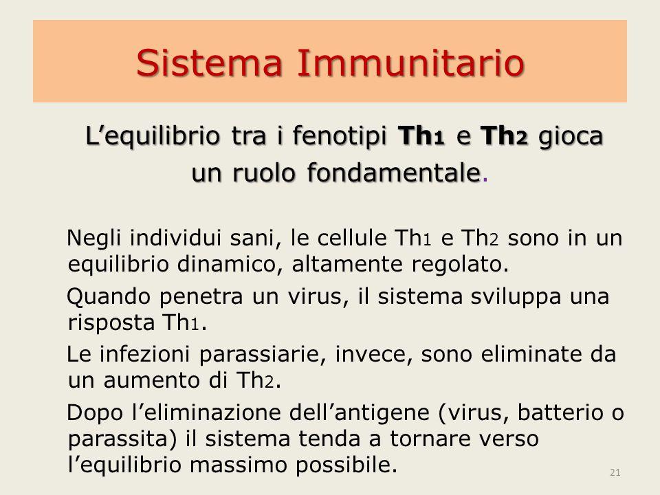 L'equilibrio tra i fenotipi Th1 e Th2 gioca