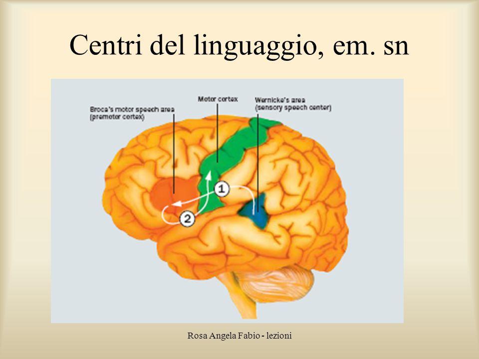 Centri del linguaggio, em. sn