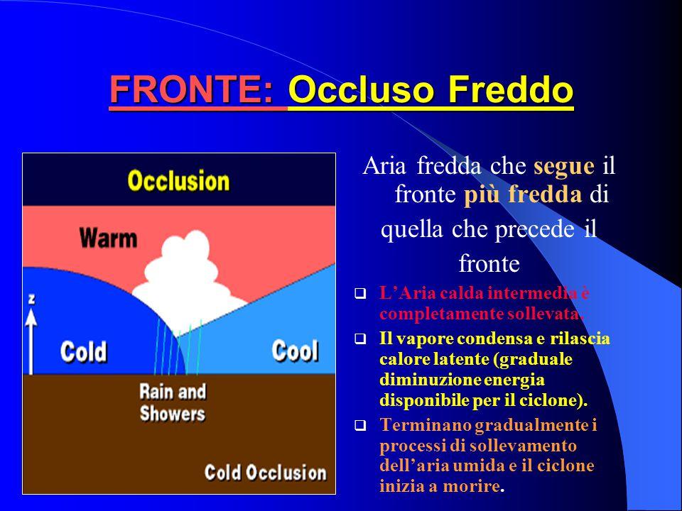 FRONTE: Occluso Freddo