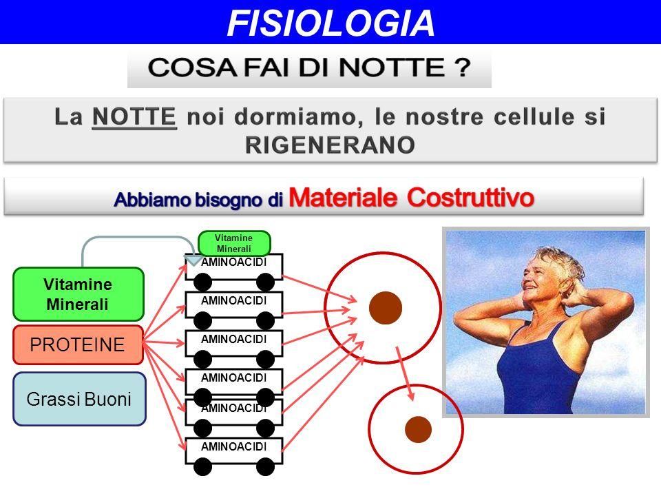 FISIOLOGIA PROTEINE Grassi Buoni Vitamine Minerali AMINOACIDI