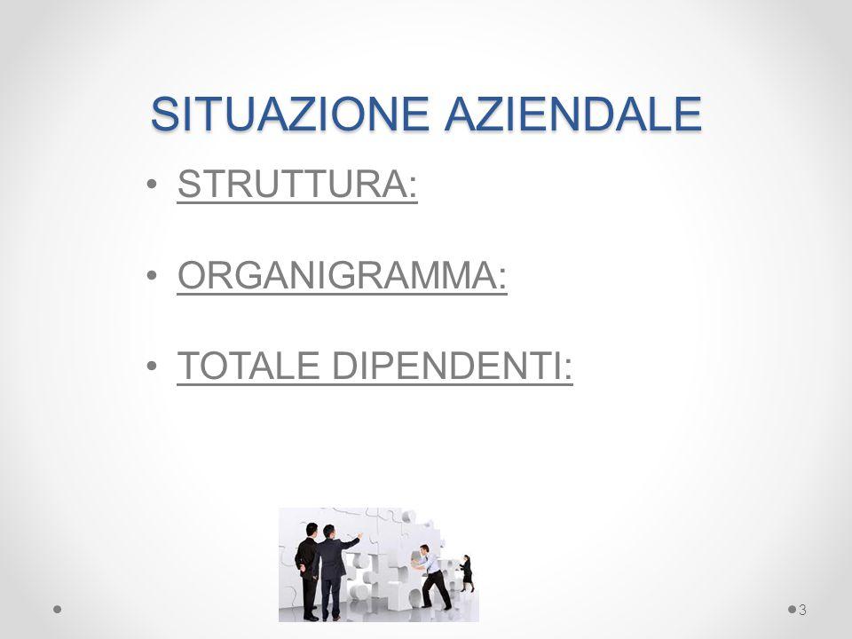 SITUAZIONE AZIENDALE STRUTTURA: ORGANIGRAMMA: TOTALE DIPENDENTI: