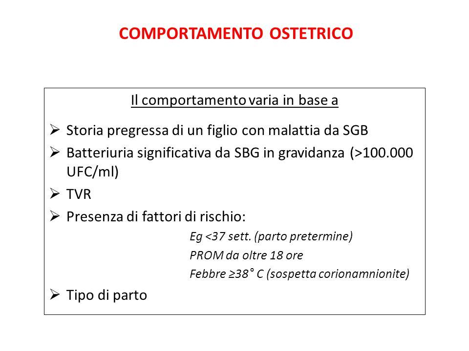 COMPORTAMENTO OSTETRICO