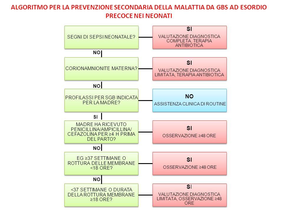ALGORITMO PER LA PREVENZIONE SECONDARIA DELLA MALATTIA DA GBS AD ESORDIO PRECOCE NEI NEONATI