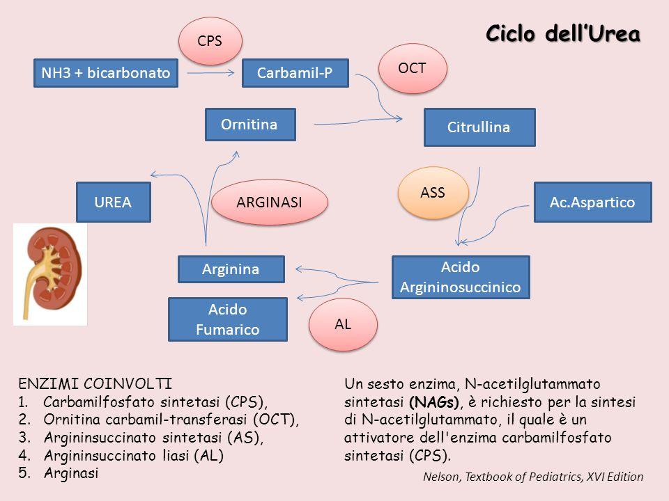 Acido Argininosuccinico