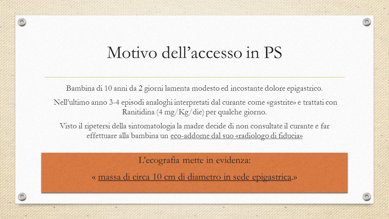 Motivo dell'accesso in PS
