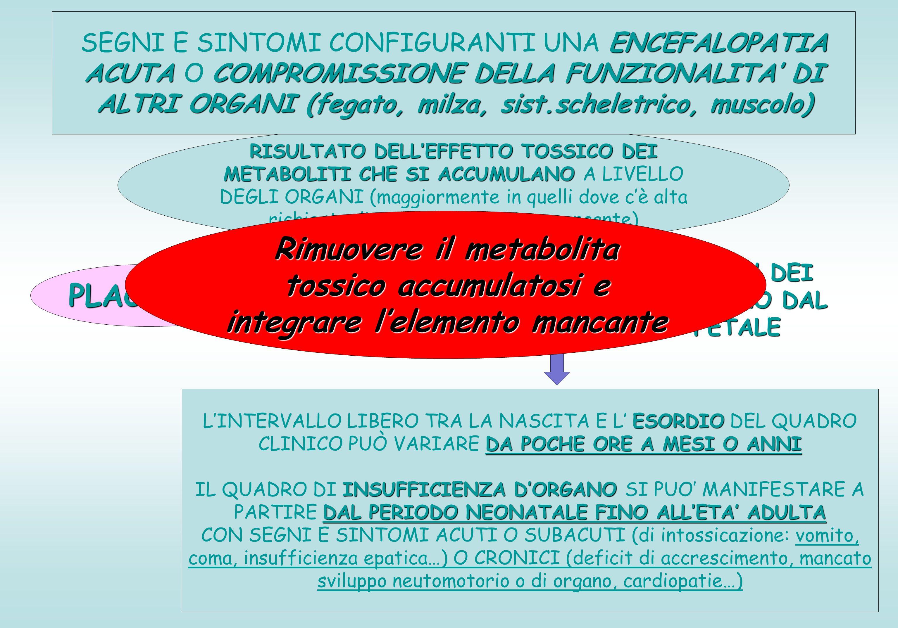 SEGNI E SINTOMI CONFIGURANTI UNA ENCEFALOPATIA ACUTA O COMPROMISSIONE DELLA FUNZIONALITA' DI ALTRI ORGANI (fegato, milza, sist.scheletrico, muscolo)