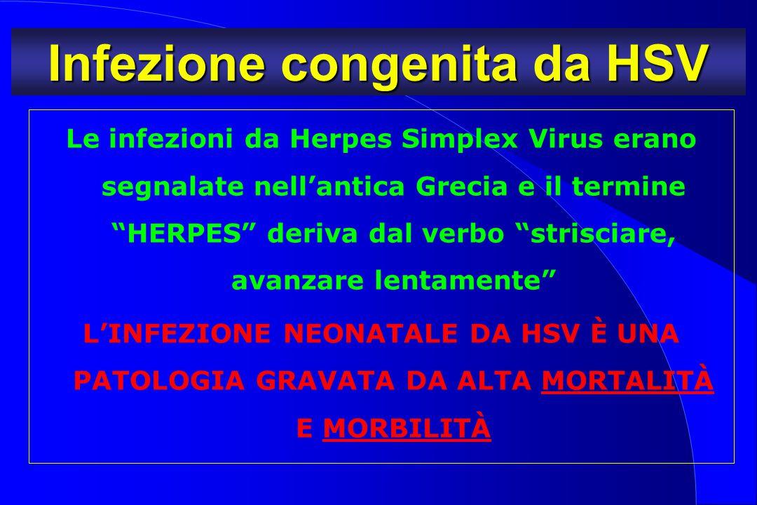 Infezione congenita da HSV
