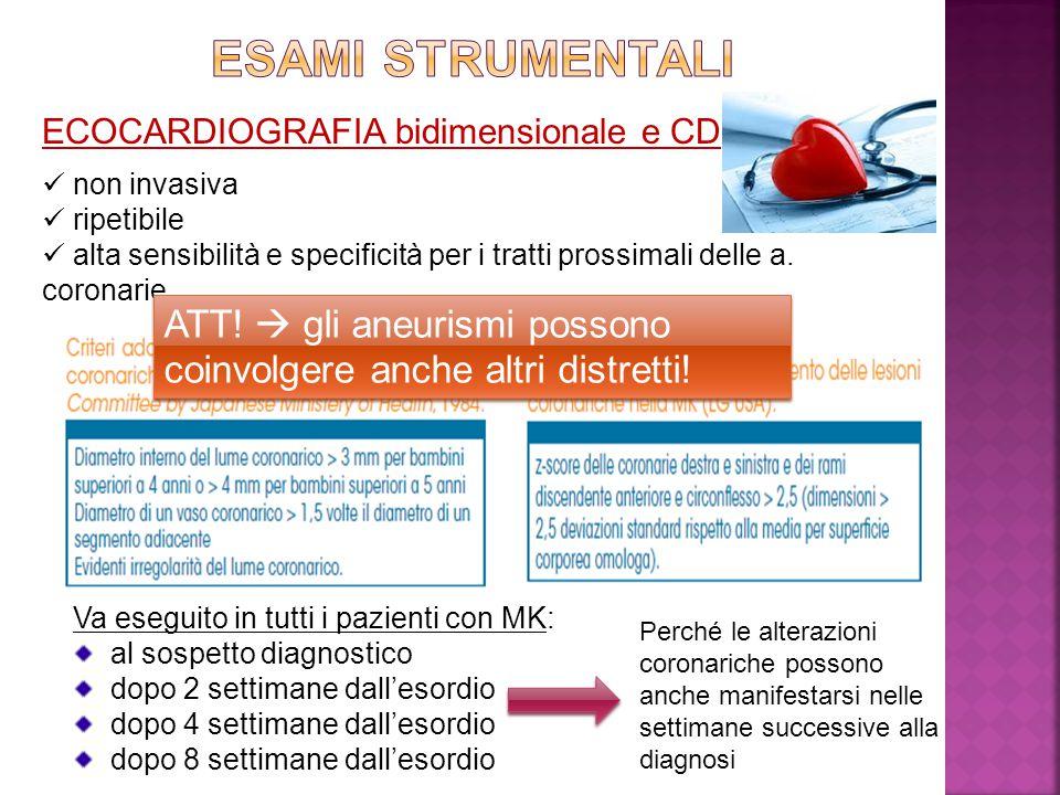 ESAMI STRUMENTALI ECOCARDIOGRAFIA bidimensionale e CD. non invasiva. ripetibile.